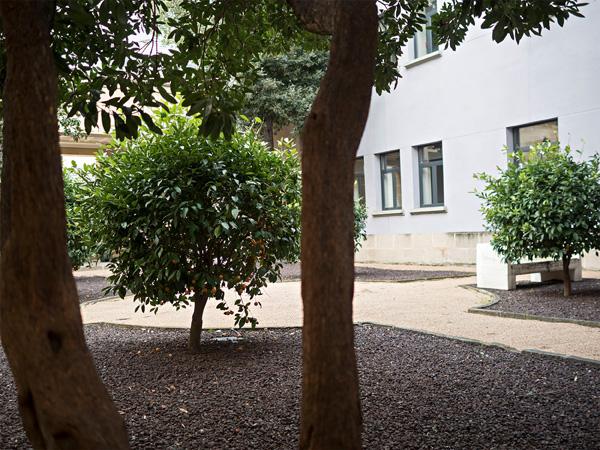 Imatge del jardí situat al costat de la sala d'actes